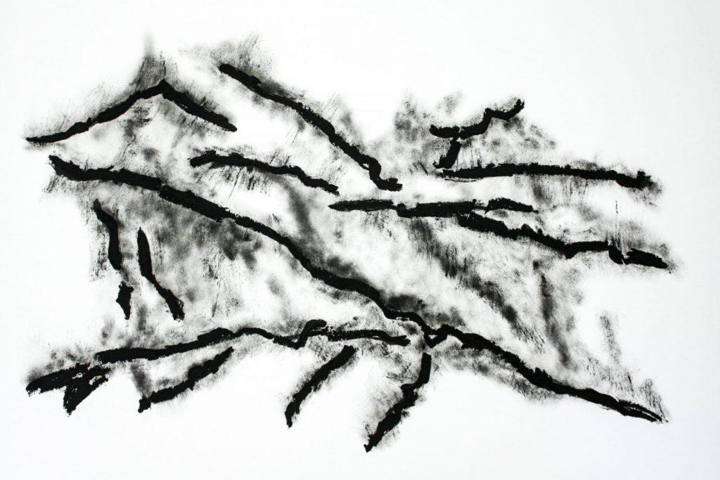 Dessin de paysage organique par Dominique Ribes, série C.-M.