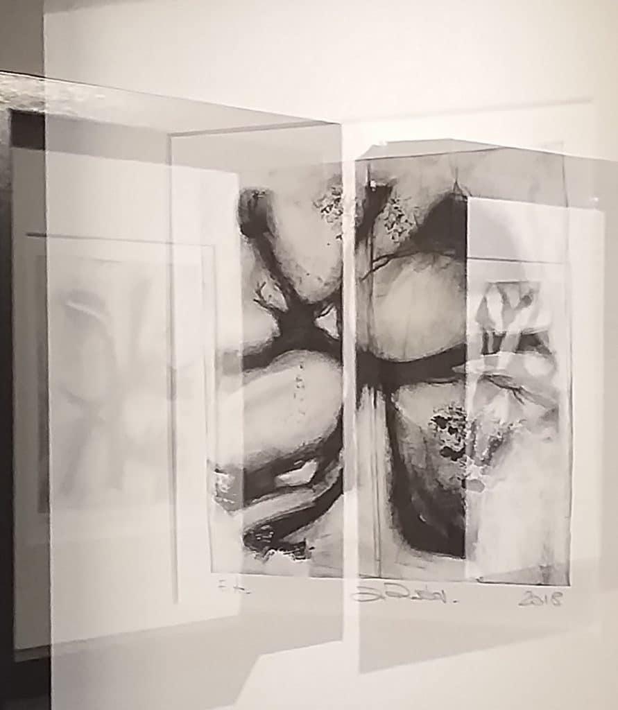 Exposition artistique, reflets, oeuvres de Dominique RIbes